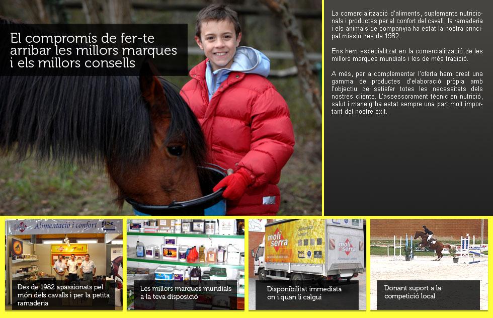 Cavalls,les millors marques i consells